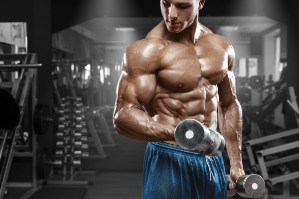 Muscular man working out in gym doing exercises with dumbbells at biceps, strong male naked torso abs