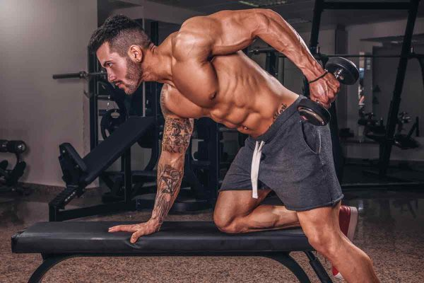 Guide to Massive Triceps